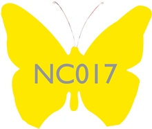 NC017 Lemon Zest Ceramic Glaze & Body Stain by Scarva Nano Colours