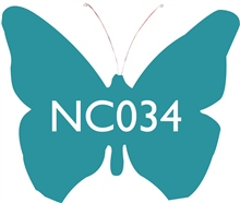 NC034 Turquoise Ceramic Glaze & Body Stain by Scarva Nano Colours