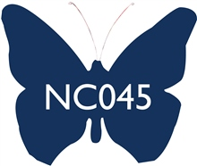 NC045 Midnight Blue Ceramic Glaze & Body Stain by Scarva Nano Colours