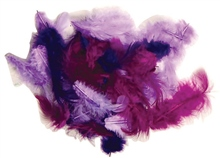 Scarva Purple Rain Feathers