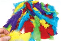 Scarva Assorted Feathers