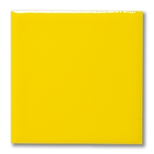 Terracolor 1031 Lemon Gloss