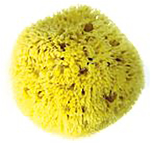 Scarva Tools Wool Sponge - Large  - Click to view larger image