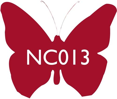 Scarva Nano Colours NC013 Raspberry Ceramic Glaze & Body Stain  - Click to view larger image
