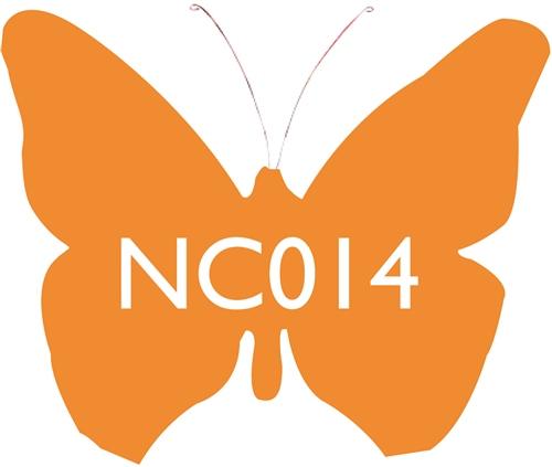 Scarva Nano Colours NC014 Mandarin Ceramic Glaze & Body Stain  - Click to view larger image