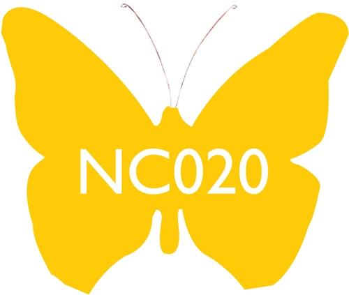 Scarva Nano Colours NC020 Sun Ceramic Glaze & Body Stain  - Click to view larger image