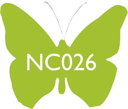 Scarva Nano Colours NC026 Lawn Ceramic Glaze & Body Stain  - Click to view larger image