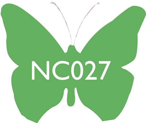 Scarva Nano Colours NC027 Cress Ceramic Glaze & Body Stain  - Click to view larger image
