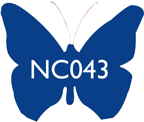 Scarva Nano Colours NC043 Denim Blue Ceramic Glaze & Body Stain  - Click to view larger image