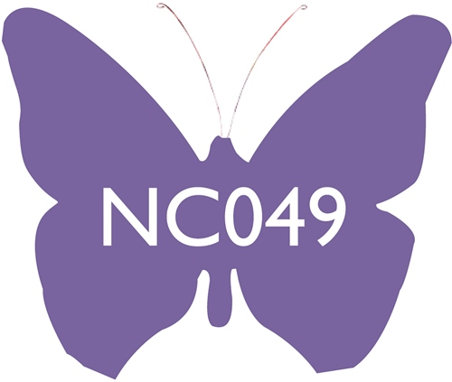 Scarva Nano Colours NC049 Amethyst Ceramic Glaze & Body Stain  - Click to view larger image