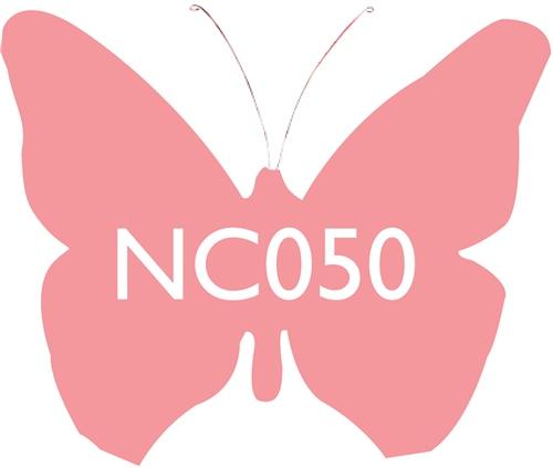 Scarva Nano Colours NC050 Salmon Ceramic Glaze & Body Stain  - Click to view larger image