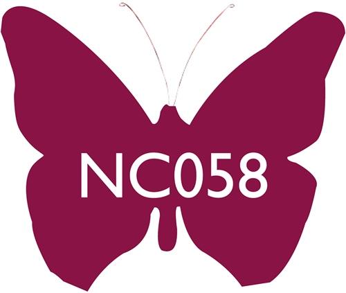 Scarva Nano Colours NC058 Plum Ceramic Glaze & Body Stain  - Click to view larger image