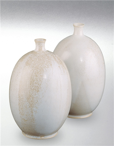 Terracolor 605 Porcelain White Powdered Stoneware Glaze  - Click to view larger image