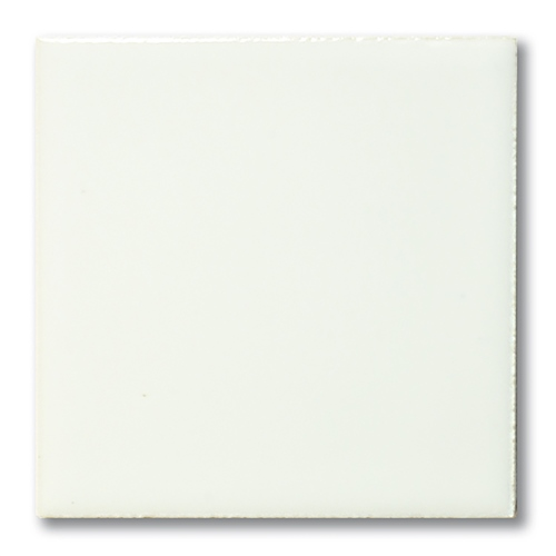 Terracolor 1020 White Gloss  - Click to view larger image
