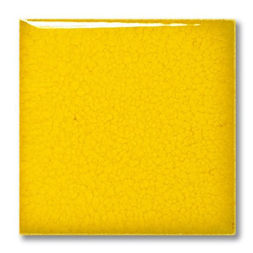 Terracolor 5031 Orangina Gloss  - Click to view larger image